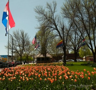 Orange City, Iowa is spruced up and blooming for the upcoming tulip festival Wednesday, May 4, 2016. (photo by Jerry L Mennenga©)