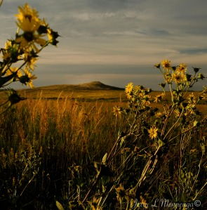 Spirit Mound, SD, Monday, August 29, 2016, which the Lewis and Clark Expedition visited as they mapped the West.       (Photo by Jerry L Mennenga©)